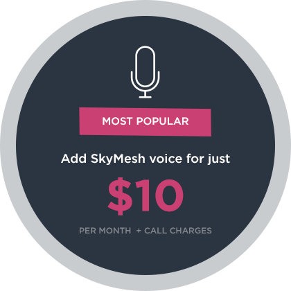 NBN™ VoIP Plans | Make Calls Over Your Internet - SkyMesh
